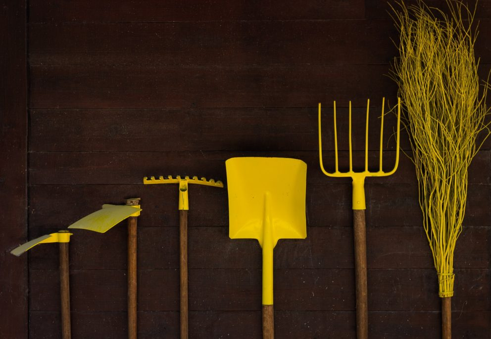 Tools alone do not make a good carpenter (or leader)